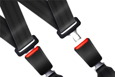 Seats Belts
